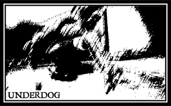 underdog header