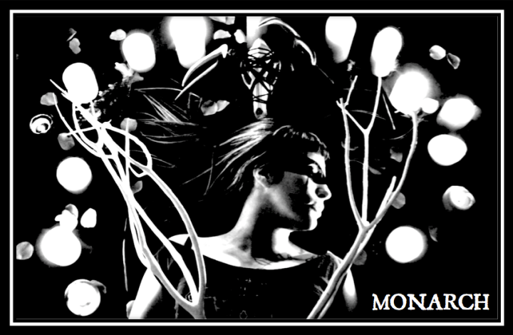 monarch header