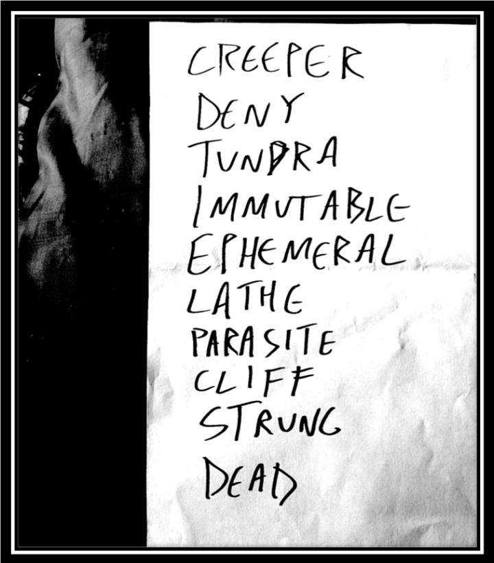pelican setlist