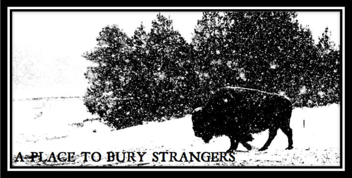 A PLACE TO BURY STRANGERS HEADER
