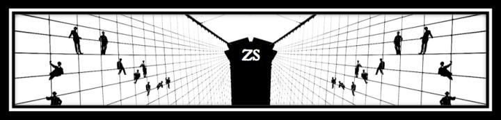 zs header