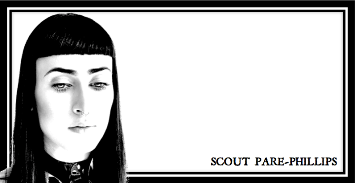 scout pare phillips header